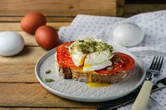 Poached Egg with Tomatoes royalty free stock photos