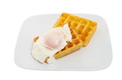 Poached egg on waffles Stock Image