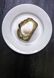 Poached Egg on White Plate Stock Photos