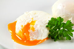 Poached eggs Royalty Free Stock Photos