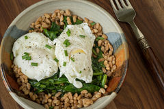Poached eggs Stock Photography