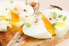 Poached Eggs on Toast. Perfectly poached fresh eggs on warm buttered toast Royalty Free Stock Photo