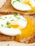Poached Eggs on Toast Breakfast Stock Photo