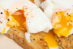 Poached Eggs on Toast Stock Photos