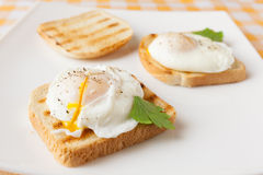 Poached eggs. On white plate Royalty Free Stock Photography