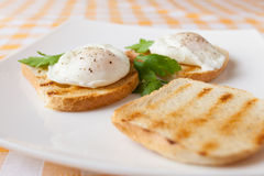 Poached eggs Royalty Free Stock Photo