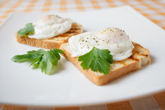 Poached eggs. On white plate Royalty Free Stock Photo