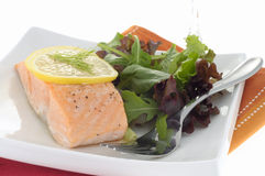 Poached Salmon 2. Delicious poached salmon served with greens and lemon Stock Photography