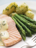 Poached Salmon with Asparagus and Sorrel Sauce Stock Photo
