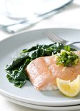 Poached Salmon Royalty Free Stock Image