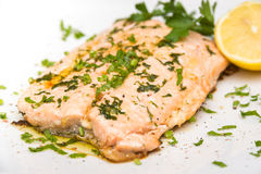 Poached Salmon Stock Photography