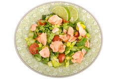 Poached Salmon Fillet with mixed Salad Royalty Free Stock Photos