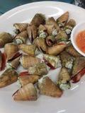 Poached Ton Fung Loh(Babylon shell) Royalty Free Stock Photography
