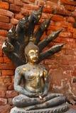 Poak buddha image1 de Naak Imagem de Stock