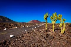 Pożarnicze góry Lanzarote Zdjęcie Stock
