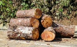Pożarniczy drewna Zdjęcia Royalty Free