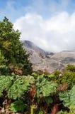 Poas wulkan - Costa Rica Obrazy Royalty Free