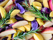 Poatoes red, white and blue with rosemary Stock Image