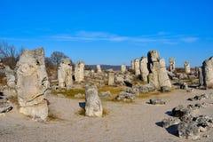Pobiti Kamani, η πέτρινη δασική φυσική επιφύλαξη στη Βουλγαρία Στοκ Εικόνες