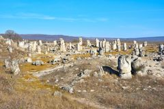 Pobiti Kamani, η πέτρινη δασική φυσική επιφύλαξη στη Βουλγαρία Στοκ εικόνες με δικαίωμα ελεύθερης χρήσης