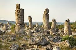 Pobiti Kamani (bosque de piedra) cerca de Varna bulgaria imágenes de archivo libres de regalías