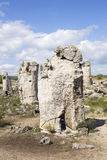 Pobiti Kamani (Standing Stones, Stone Forest) Unique Natural Roc Stock Photo