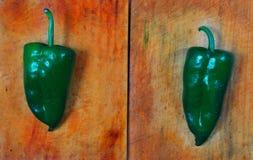 poblano πιπεριών τσίλι της Χιλής Στοκ Εικόνες