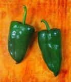 poblano πιπεριών τσίλι της Χιλής &kappa Στοκ εικόνες με δικαίωμα ελεύθερης χρήσης