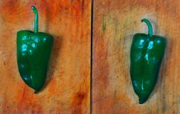 Poblano chili peppers chile Stock Photo