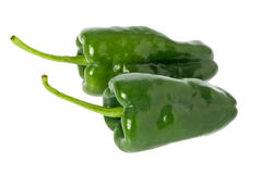 Poblano Peppers Stock Images