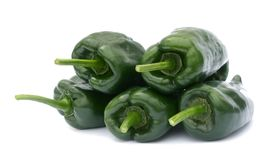Poblano peppers Royalty Free Stock Image