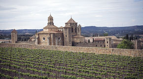 Poblet monastery. Monastery of poblet view in Catalonia Stock Image