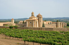 Poblet Monastery in the middle of vineyards Royalty Free Stock Photos