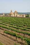 Poblet Monastery in the middle of vineyards Stock Photos