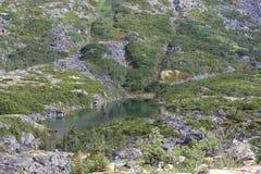 Pobocze jezioro Obrazy Royalty Free