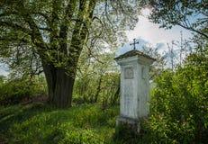 Pobocze kaplica pod lipowym drzewem Zdjęcie Stock
