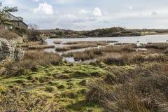 Pobocze widok blisko Rhoscolyn, Święta wyspa na Anglesey Obrazy Stock