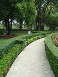 Pobocze widok trawa krajobraz Zdjęcie Royalty Free