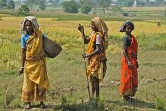 Pobreza tribal en la India Foto de archivo libre de regalías