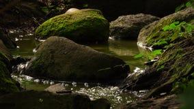 Poca agua de la cala en naturaleza almacen de metraje de vídeo