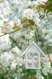 Poca casa de madera en primavera con la flor Sakura de la cereza del flor Imagenes de archivo