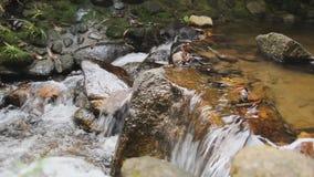 Poca cascada con la piedra almacen de metraje de vídeo