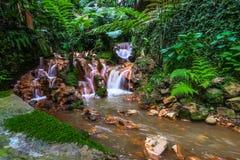 Poca cascada en parque con el musgo Fotografía de archivo libre de regalías