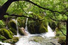 Poca cascata Fotografie Stock
