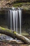 Poca cascata nel legno immagini stock