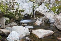Poca cascata in un ruscello della montagna Fotografia Stock Libera da Diritti