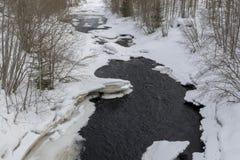 Poca corrente nella foresta in cui il disgelo ha cominciato fotografia stock