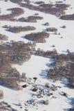 Poca granja del país en las arboledas del abedul en el invierno, visión superior Imagenes de archivo