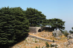 Poca iglesia en la arboleda del cedro, Líbano Imagenes de archivo