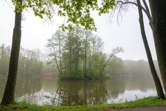 Poca isla en el lago en parque en mañana brumosa Foto de archivo libre de regalías